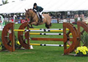 Obstacle CSO Oxer droit