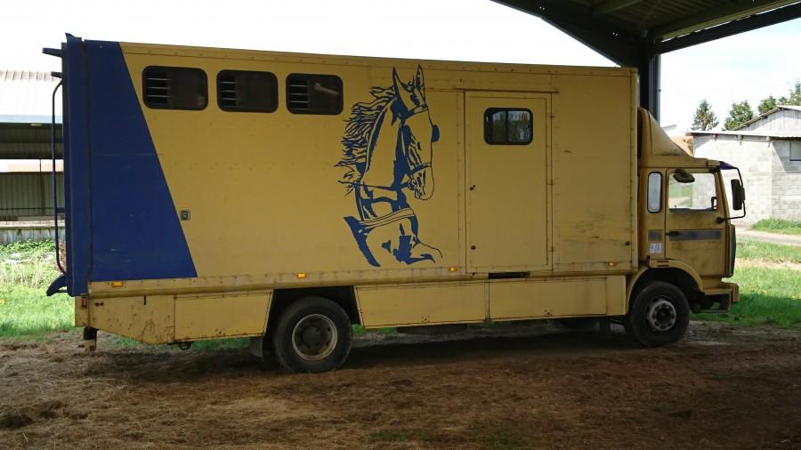 camion chevaux 4 places. Black Bedroom Furniture Sets. Home Design Ideas