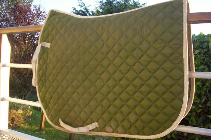 Equipement vert pomme pour cross Tapis cheval vert pomme