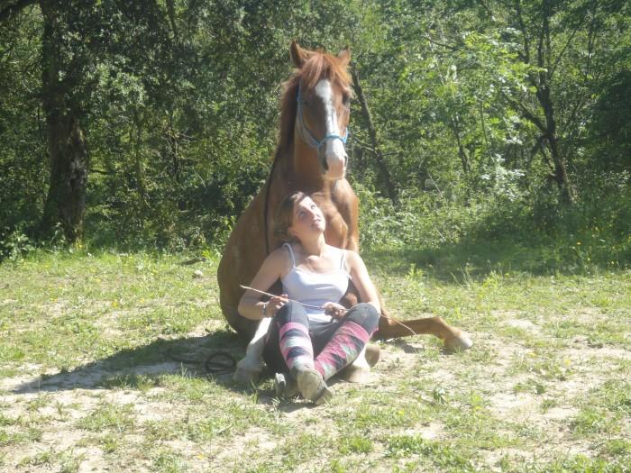 La race Quarter Horse Inaroun-639db60eb950cc6acc49b27411cb14aa1