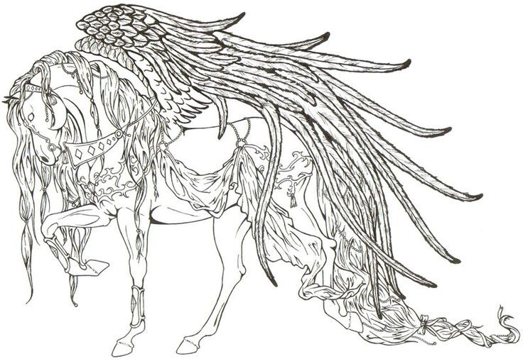 coloriage anti stress cheval