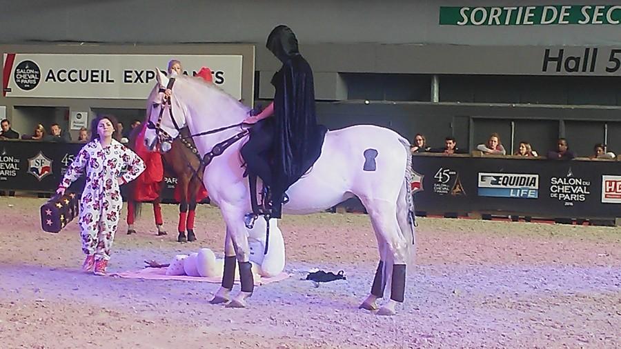 Salon du cheval paris 2016 for Adresse salon du cheval paris