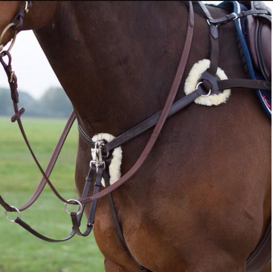 Troc horse