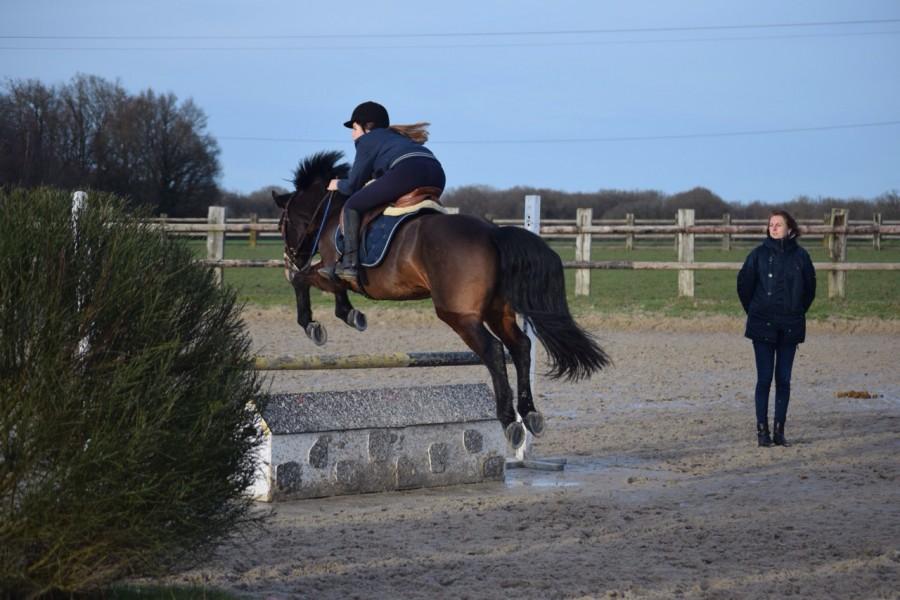 poney 92100