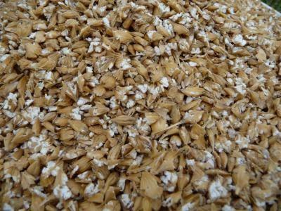 Les céréales apportent de l'énergie principalement sous forme d'amidon