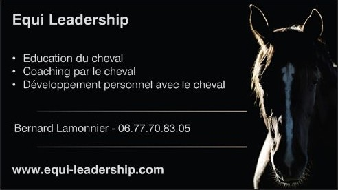 Photo de profil de equileadership
