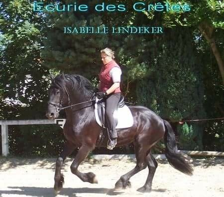 Un Couple Français Amateur De Candaulisme